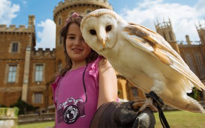 5 Things To Do On A Visit To Belvoir Castle